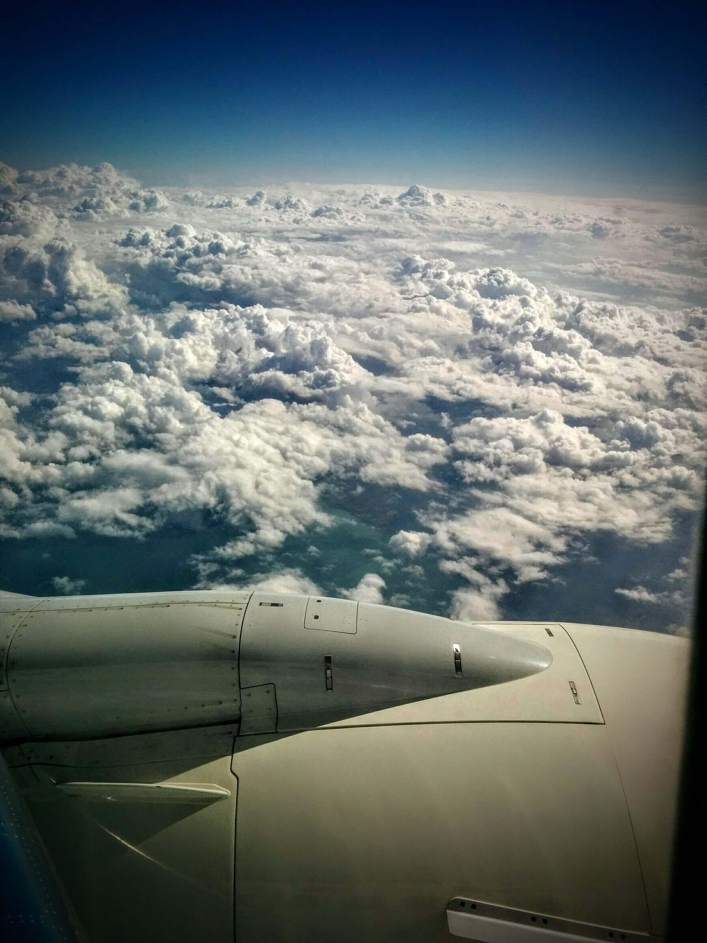 פחד מטיסות קברניט מיקי כץ.סמינר טיסה ללא פחד עם קברניט מיקי כץ